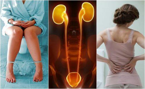 7 sintomas que você experimenta quando seus rins começam a falhar