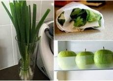 9 truques para manter seus alimentos frescos por mais tempo