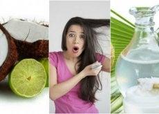 Tratamento de água de coco e limão para controlar a queda de cabelo