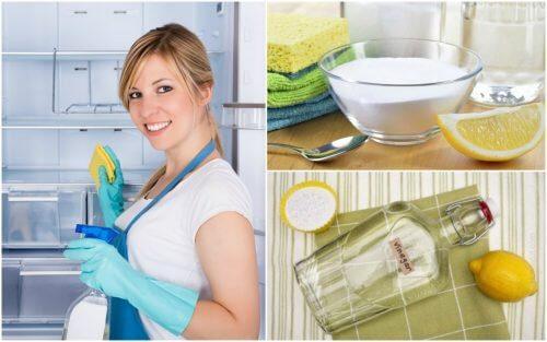 Como limpar e desinfetar a geladeira usando 5 soluções caseiras
