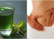 Como preparar água verde para desintoxicar seu corpo em 3 dias