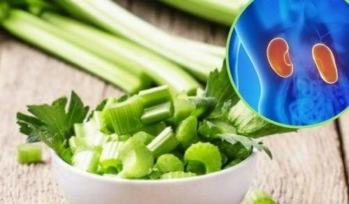 5 remédios herbais para combater a dor nos rins