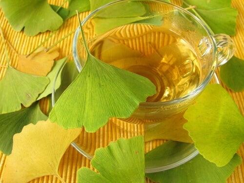 Chás para prevenir doenças neurodegenerativas