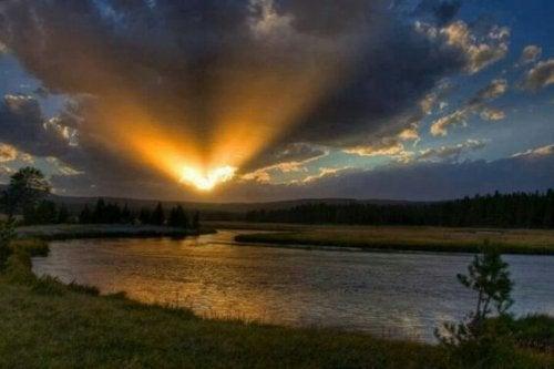 Corajoso é quem, apesar de tudo, consegue se levantar todos os dias