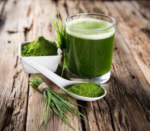 Água verde para desintoxicar seu corpo