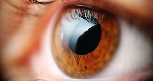 Problemas que podem ser notados pela visão