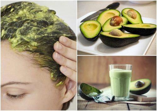 6 remédios caseiros feitos com abacate