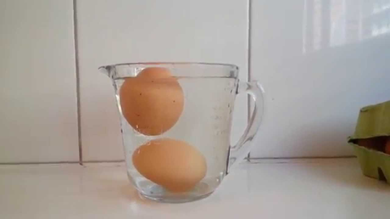 ovos na água