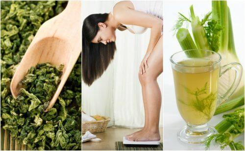 Perca peso com facilidade usando estas 5 plantas medicinais
