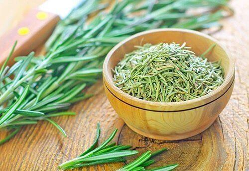 O alecrim é uma das ervas que podem ajudar a combater piolhos e lêndeas