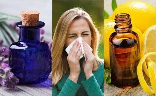 Como controlar os sintomas das alergias com estes 6 óleos essenciais
