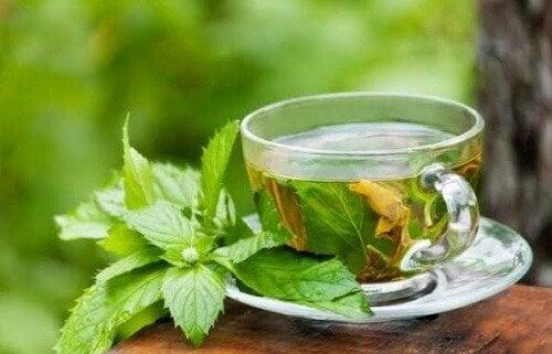 Chá de melissa para ter uma pele jovem