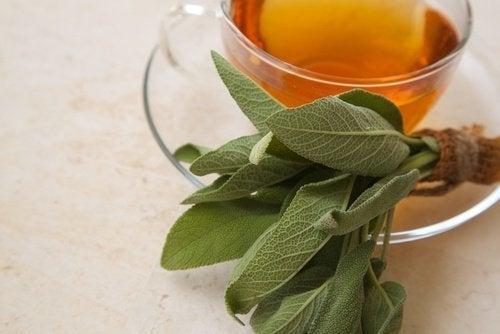 Chá de sálvia para tratar a faringite naturalmente