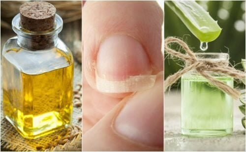 Como melhorar as unhas quebradiças com 5 tratamentos naturais