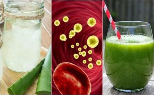 5 bebidas medicinais para limpar o sangue