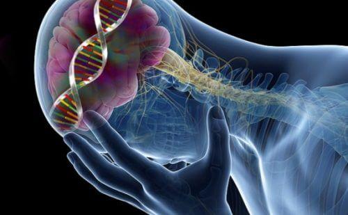 9 efeitos surpreendentes associados a um nível baixo de serotonina