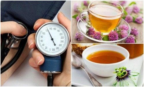 As 6 melhores ervas para baixar a pressão arterial