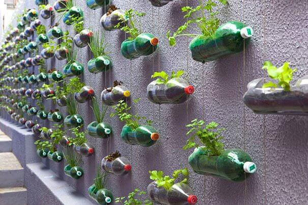 Jardim vertical para reaproveitar garrafas plásticas