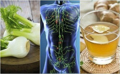 6 infusões que ajudam a limpar o sistema linfático