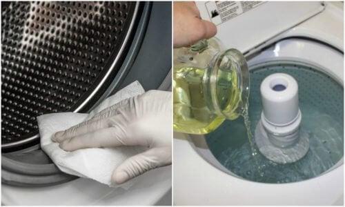 Elimine o mofo da lavadora com estas 3 soluções ecológicas