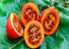 4 frutas e verduras estranhas que você com certeza não conhece