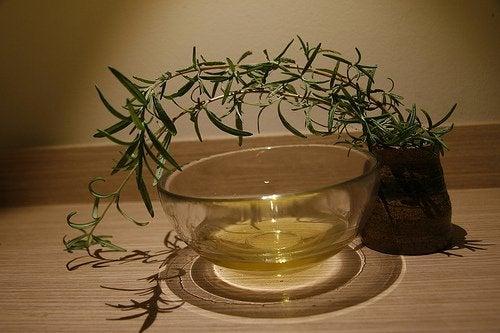 Óleo essencial de árvore do chá
