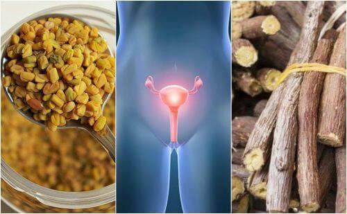 5 remédios naturais para amenizar a síndrome do ovário policístico