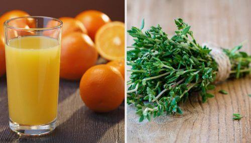 6 antibióticos naturais que você provavelmente não conhecia