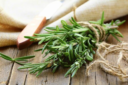 Alecrim é uma das ervas que estimulam o crescimento do cabelo