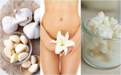 7 alimentos que ajudam a proteger a zona íntima feminina