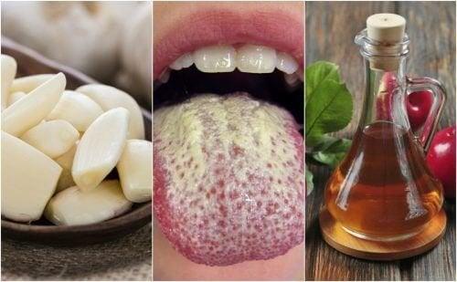 Controle a cândida com 6 remédios naturais