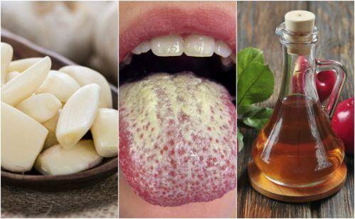 Como controlar o crescimento excessivo de cândida com 6 remédios naturais