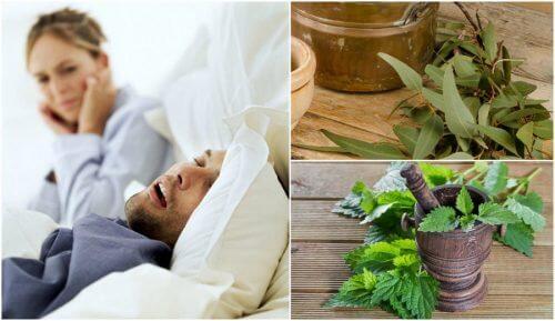 Como preparar 5 remédios caseiros para reduzir os roncos