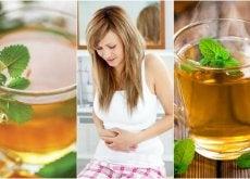 5 melhores infusões para aliviar o cólon irritável