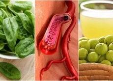 Os 7 melhores alimentos para aumentar as plaquetas do sangue