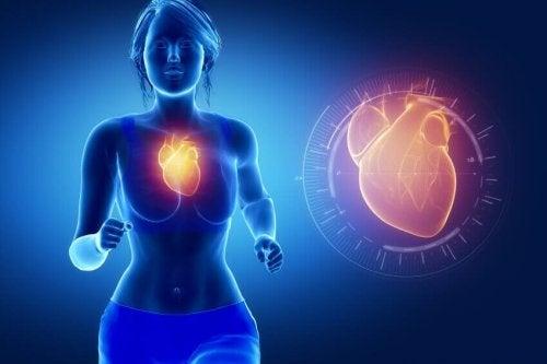 Saúde cardiovascular