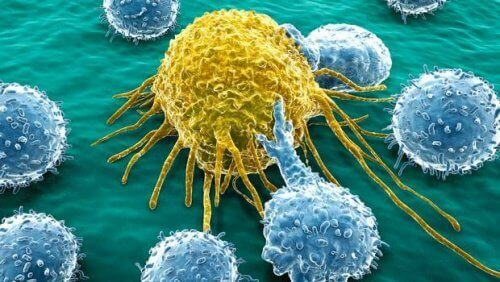 Se há um componente familiar, de que forma podemos prevenir o câncer?