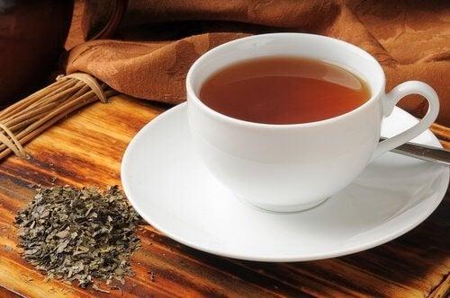 Chá de boldo para combater as flatulências