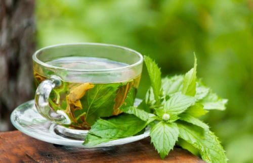Xícara de chá verde para tratar a prisão de ventre