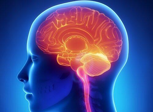 Cérebro de uma pessoa com esclerose múltipla