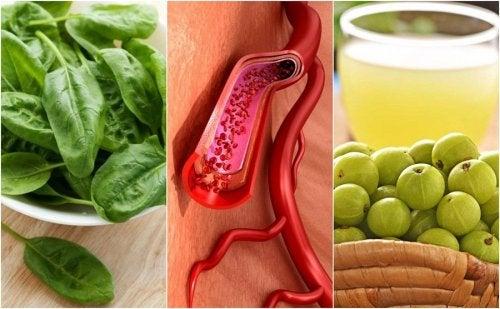 Las alimentos para plaquetas subir