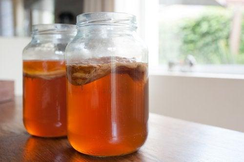 Processo para preparar kombucha em casa