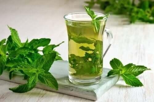 A menta é uma das plantas mais utilizadas para reduzir os incômodos digestivos