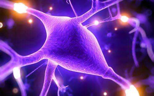 5 razões pelas quais o Magnésio melhora as capacidades do cérebro