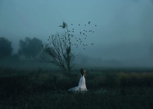 Mulher no campo com pássaros ao anoitecer