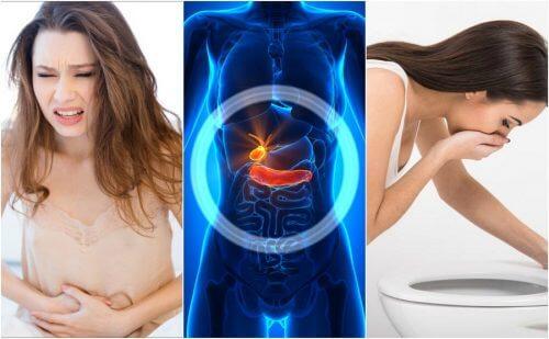 6 sinais que alertam sobre problemas na vesícula biliar