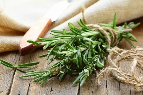 Você sabia que pode aplicar alecrim e canela no cabelo para deixá-lo mais saudável, mais longo e mais bonito?