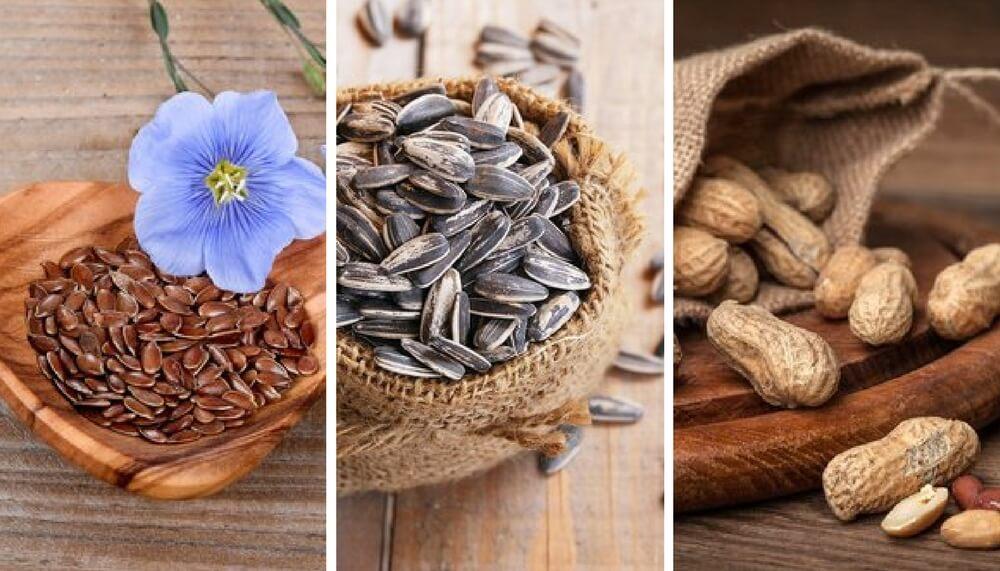 5 sementes comestíveis e suas incríveis propriedades