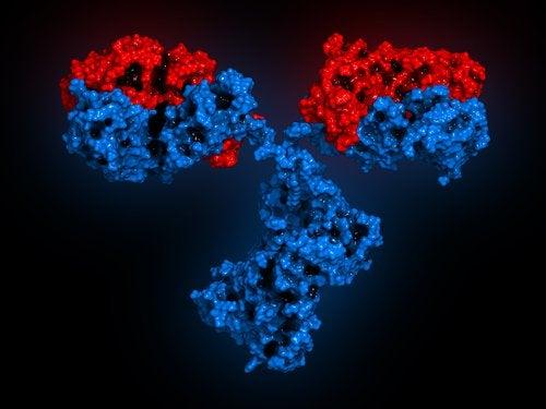 Tratamento do lúpus eritematoso sistémico desde o DNA