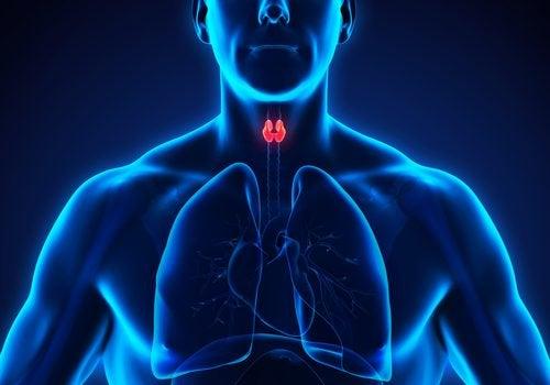 Tratamento do hipotireoidismo